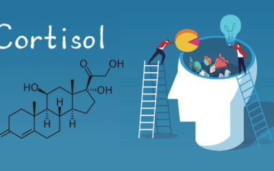 High Cortisol Levels Can Damage Your Memory as You Age