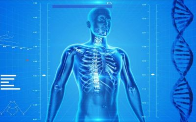 Chronic Stress Ages Your Bones And Causes Osteoporosis